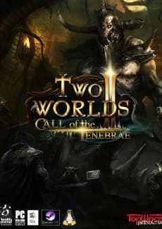 Постер Two Worlds 2: Call of the Tenebrae