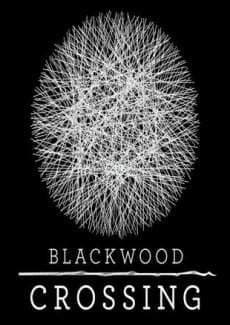 Постер Blackwood Crossing