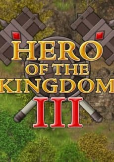 Hero of the Kingdom 3
